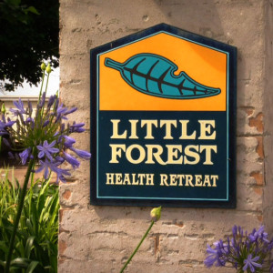 Little Forest health retreat